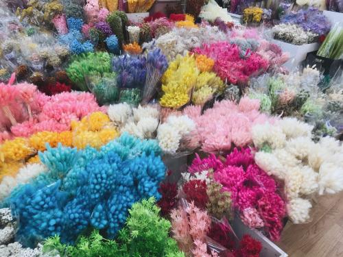 корейская флористика. сухоцвет лагурус